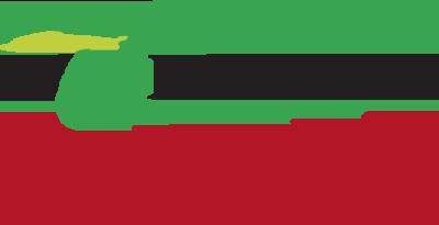 logo-olivicola-colori